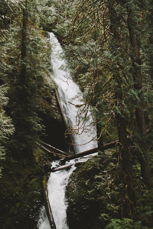 hood-canal-waterfall-elopement-chelsea-matt-211-of-356 Hood Canal Waterfall Elopement - Chelsea + Matt Elopements