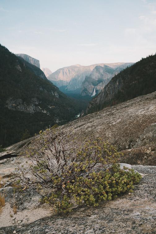 yosemite-engagement-national-park-california-photographer-94-of-65 Yosemite Engagement Session - Nicole + Johannes Engagements